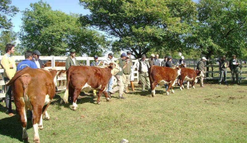 Abertas inscrições para 80 vagas em curso técnico de agronegócio no Senar-PB