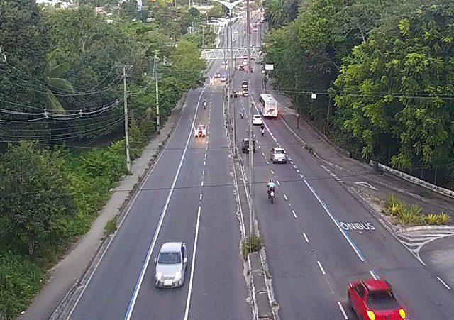 Trânsito: faixas exclusivas para ônibus são liberadas na Capital