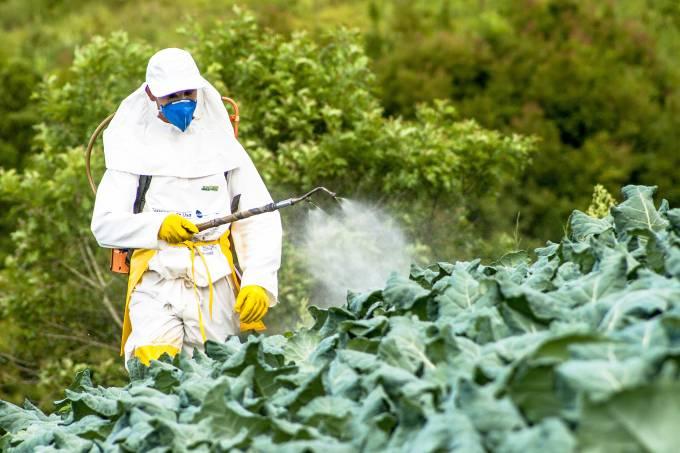 Entrevista: agrotóxicos tem impacto direto na saúde humana, diz especialista